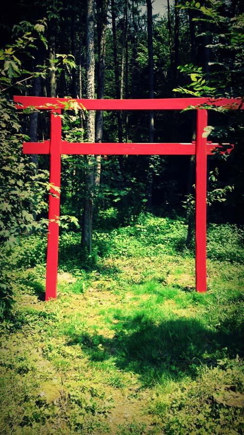 Torii-Wald